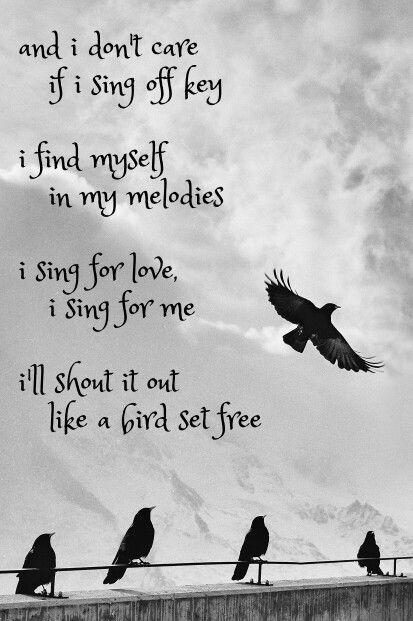 Bird Set Free - Sia
