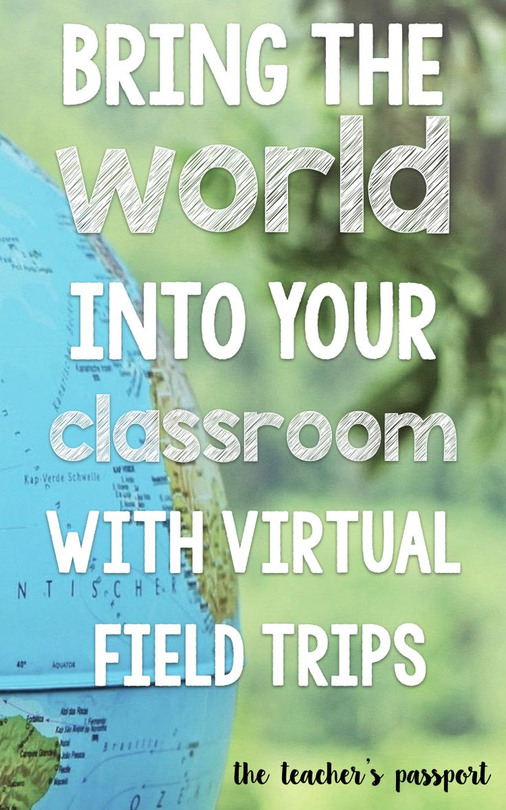 Bring the world into your classroom with virtual field trips (Freebie included in blog post!)