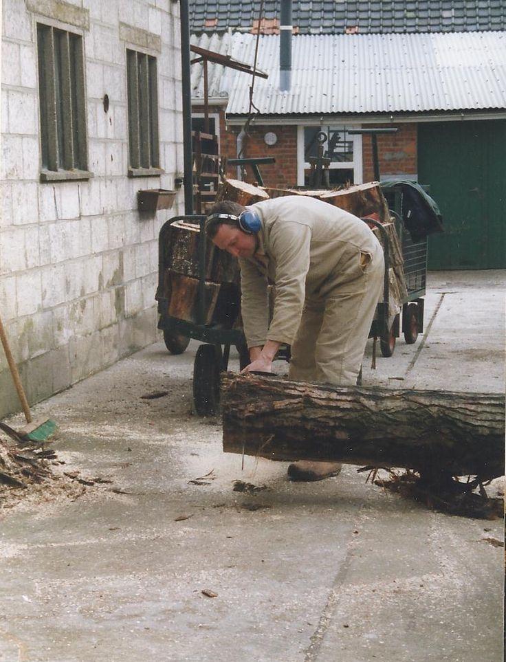 boom toppen zagen voor kleine klompjes. 1996