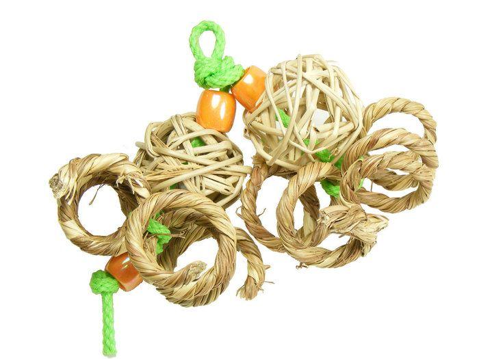 The Spunky Parrot - Pumpkin Twirl, $2.00 (http://www.spunkyparrot.ca/skewer-refills/pumpkin-twirl/)