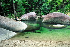 The magnificent Daintree rainforest; the oldest rainforest in the world.