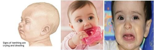 Frequent crying, drooling of salive, biting and irritation are teething symptoms