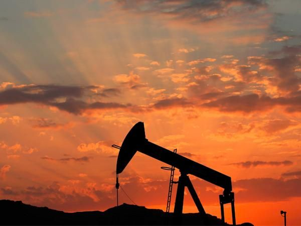 Oil may rally to $50 raising demand for raw materials - The Economic Times