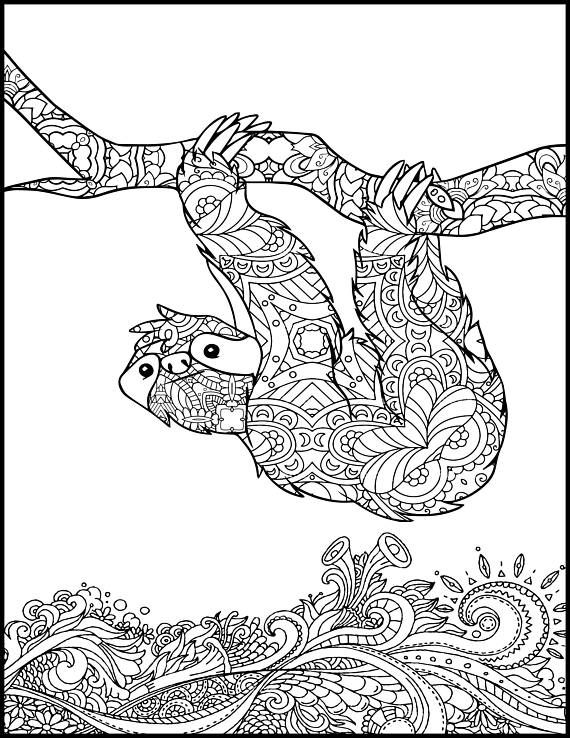 Printable Sloth Coloring Pages Rainforest Animals Animal