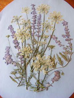 Pressed Flower Picture how to DIY, Queen Anne's Lace, Russian Sage