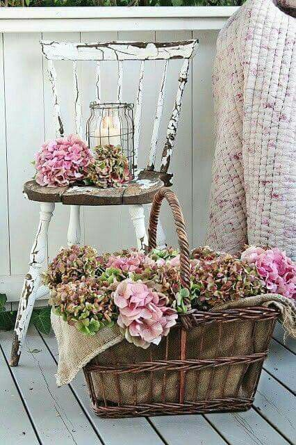 -Hydrangeas, so pretty**