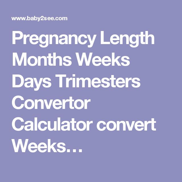 Pregnancy Length Months Weeks Days Trimesters Convertor Calculator convert Weeks…