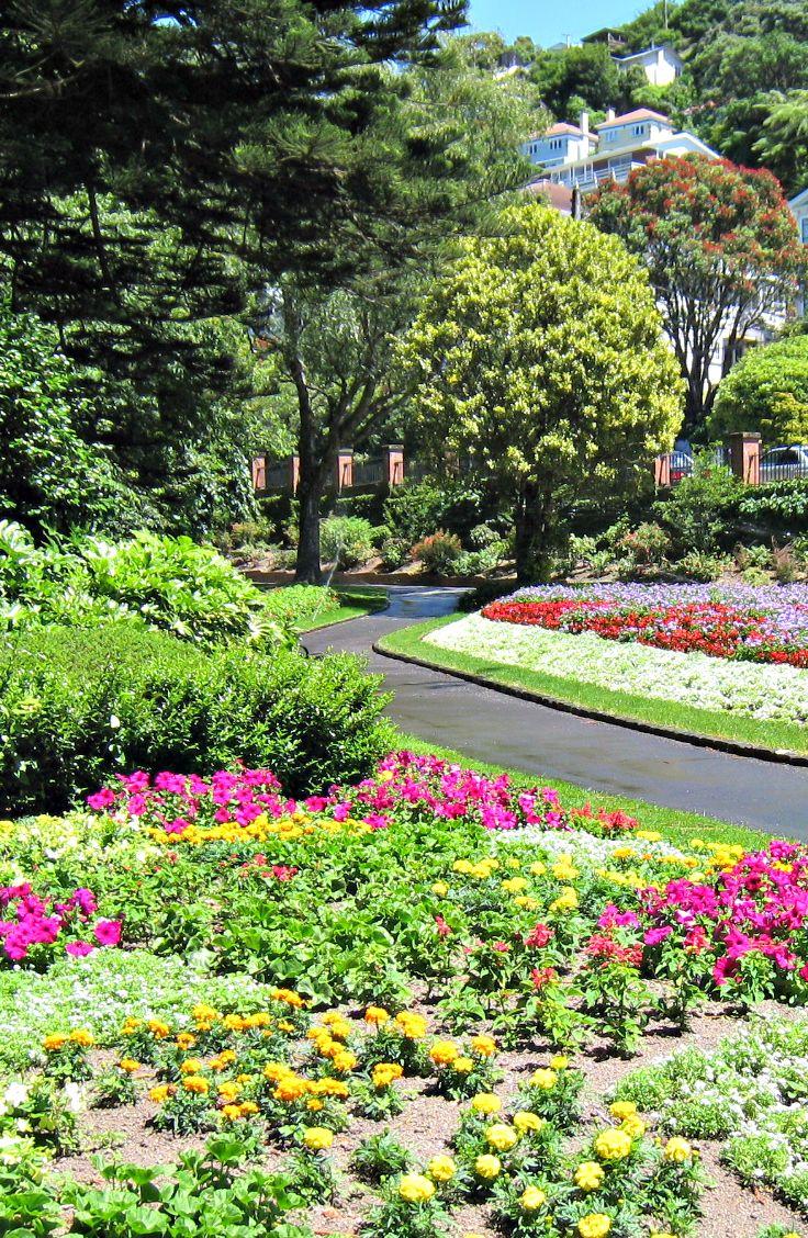 Wellington Botanical Gardens. New Zealand