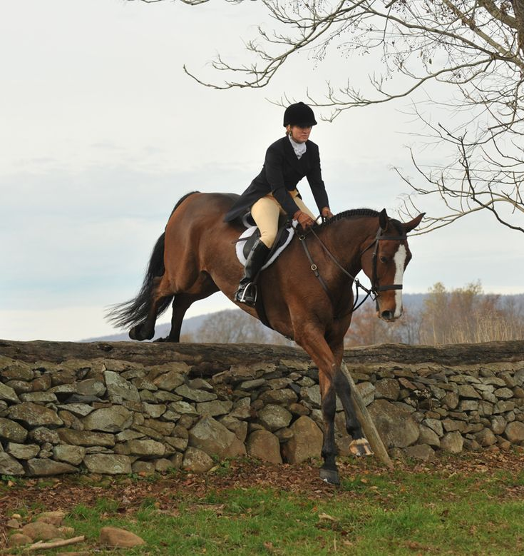 Lady Louise is such a great horse woman. She loves jumping over all the castle walls with her gelding Jimmie......