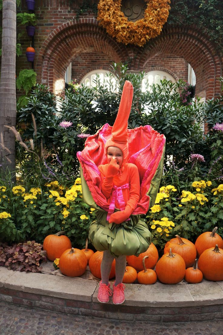 25 best fall images on pinterest fall flowers flower show and three cheers for 7 year old phipps fan vera who knew she wanted to be a corpse flower for halloween the moment she saw romero in bloom dhlflorist Choice Image
