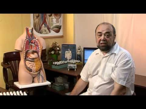 Lymfatický systém, 1 část - YouTube
