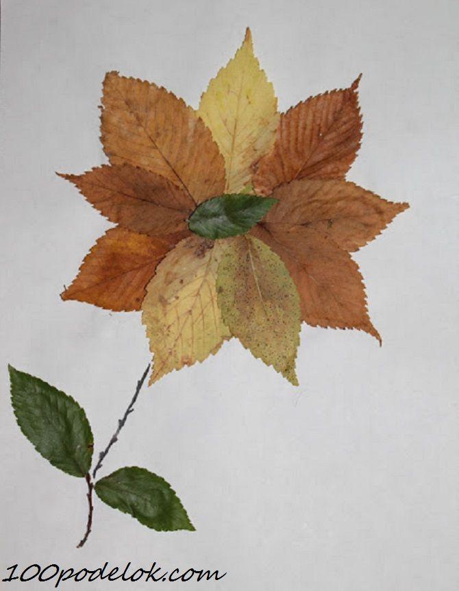 поделки и рисунки из листьев нечто белой