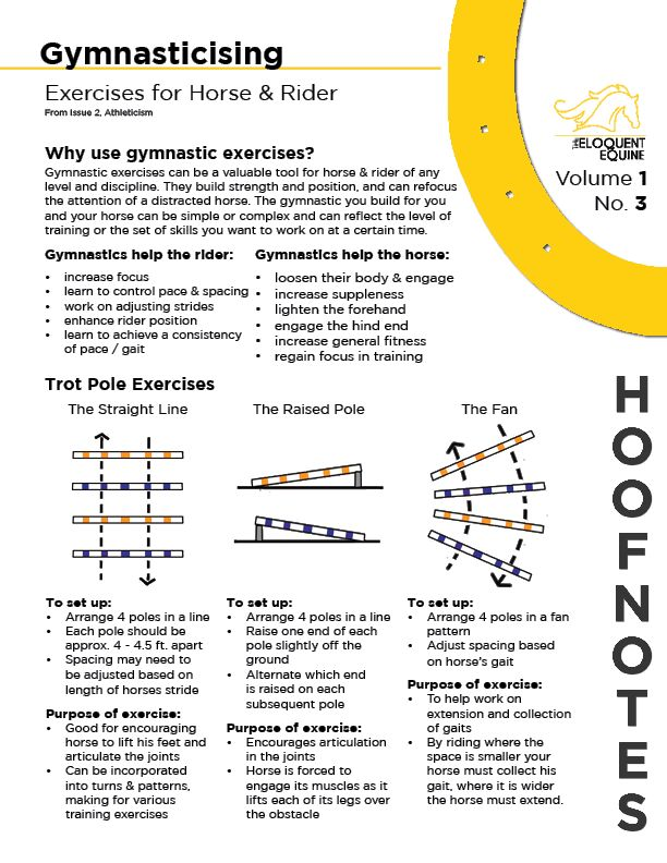 Volume 1, No. 3 focuses on the benefits of gynmastic exercises for horse and rider. It also provides some simple trot pole exercises you can try at home. Based on a larger article from Issue 2, Athleticism. Download the PDF here: http://wp.me/p3ER8w-8B
