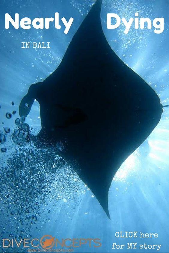 Nusa Penida Diving Bali Mola-Molas and My Near-Death Experience  LatinAbroad.com