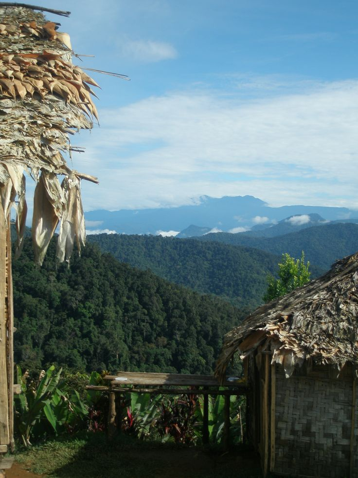 Kokoda Trail  - Papua New Guinea