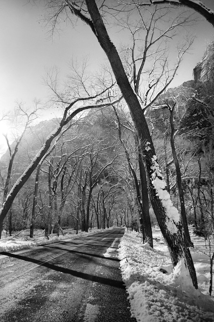 Ethereal landscapes nature photography by donna geissler - Winter