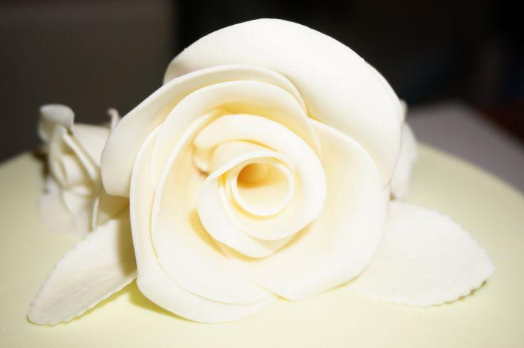 Modelling chocolate rose