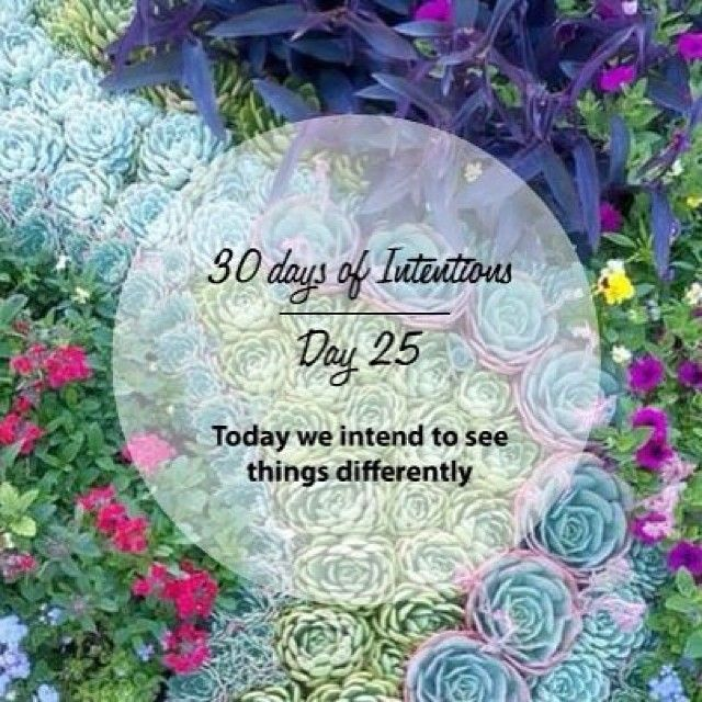 Day 25: 30 days of intentions. Today we intend to see things differently #dailyintention #affirmation #stralastyle