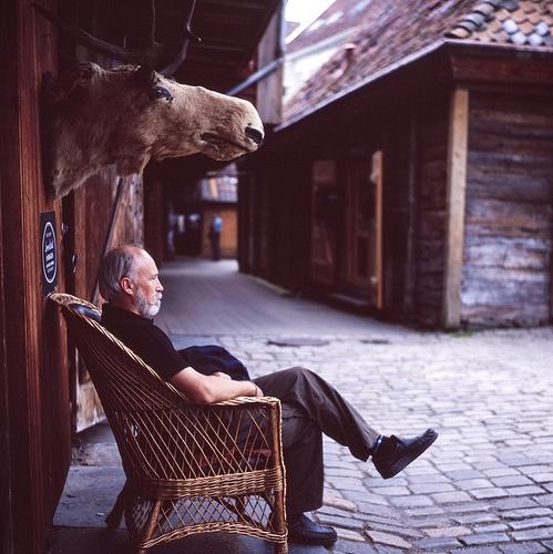 Wild Scandinavia by patrickjoust, via Flickr