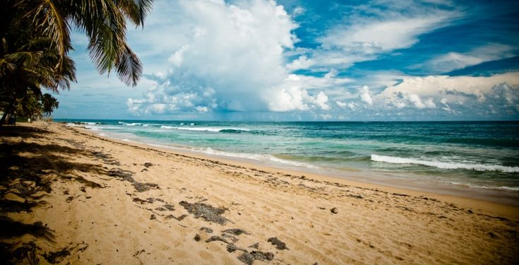 17 Best Ideas About Jamaica Hurricane Season On Pinterest  Best Honeymoon De