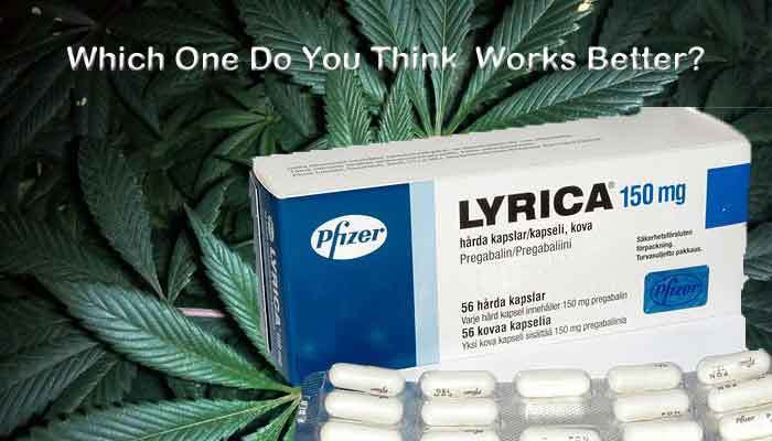 Which works best for Fibromyalgia? Fibro medications or marijuana?