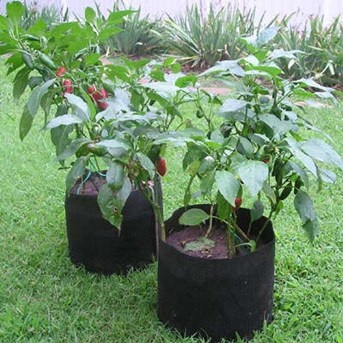 Black Fabric Smart Pot Grow Bags (set Of