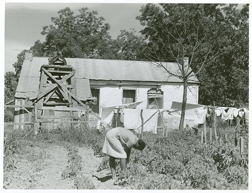 Old slave quarters on one of the plantations .