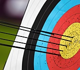 7. Learn and be really good at Archery.