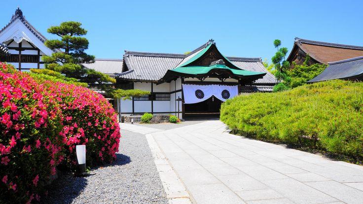 京都大覚寺の式台玄関と鮮やかかな見ごろのサツキ