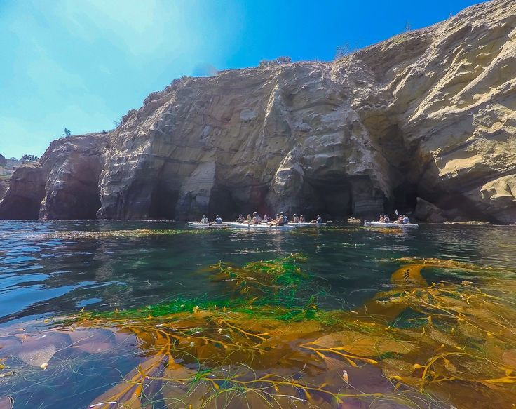 A kayak tour of the La Jolla sea caves by Everyday California