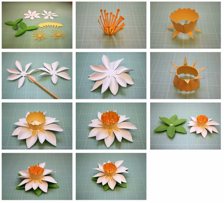 Fringed and Spring 3D Paper Flowers!