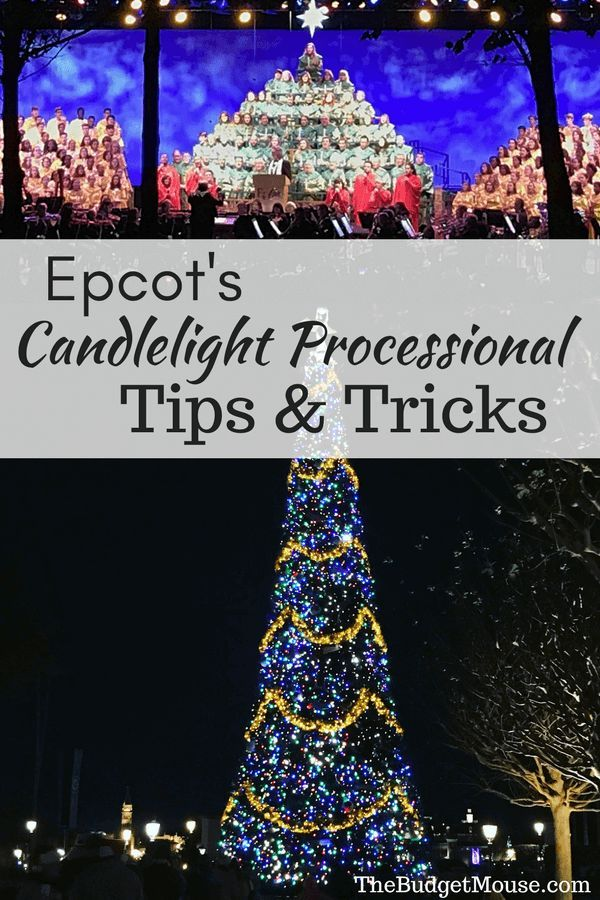 Tips for the Candlelight Processional at Epcot, including dates, how to book a dining package, and the cheapest packages with the best food! #disneyworld #budgettravel #familytravel
