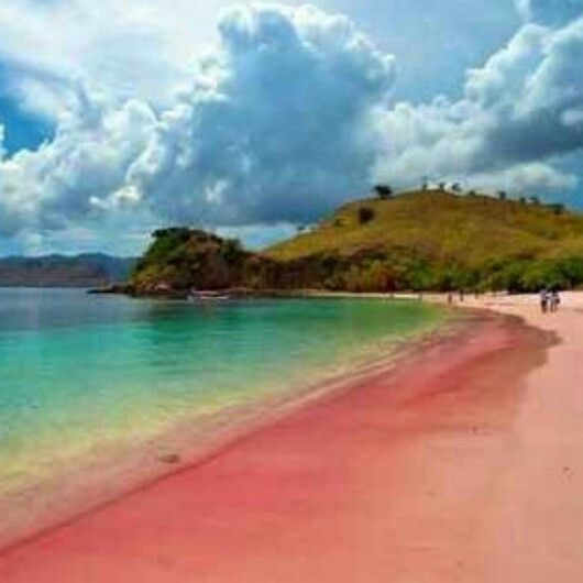 Pink beach in lombok, Indonesia