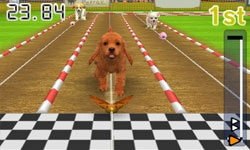 Enter Competitions | nintendogs + cats