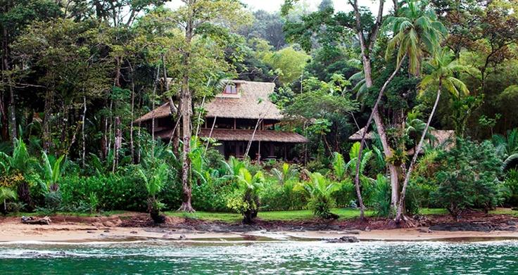 Drake Bay || Copa De Arbol Beach and Rainforest Resort