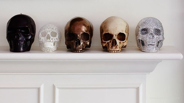 Skull home decor                                                                                                                                                                                 More