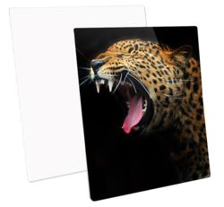 Metal Photo Panels HD Gloss - Square (50cm)