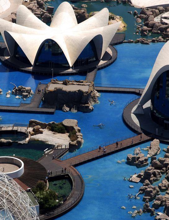 Oceanografic Valencia Aquarium Ticket   VLC Valencia Tourism