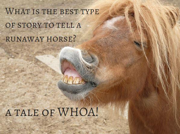 Horse jokes - photo#55