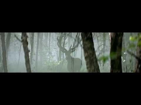 ▶ Lolita Lempicka by Yoann Lemoine - YouTube