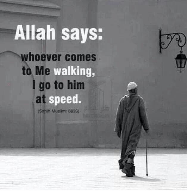 Sahih Muslim 6833