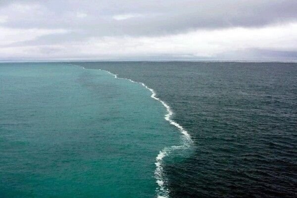 El Golfo de Alaska  Donde dos mares se juntan pero no se mezclan entre si. Uno por ser de agua dulce y otro por la densidad de agua salada