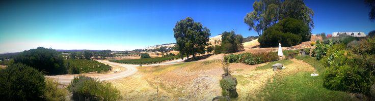 Bethany panorama, summer 2014