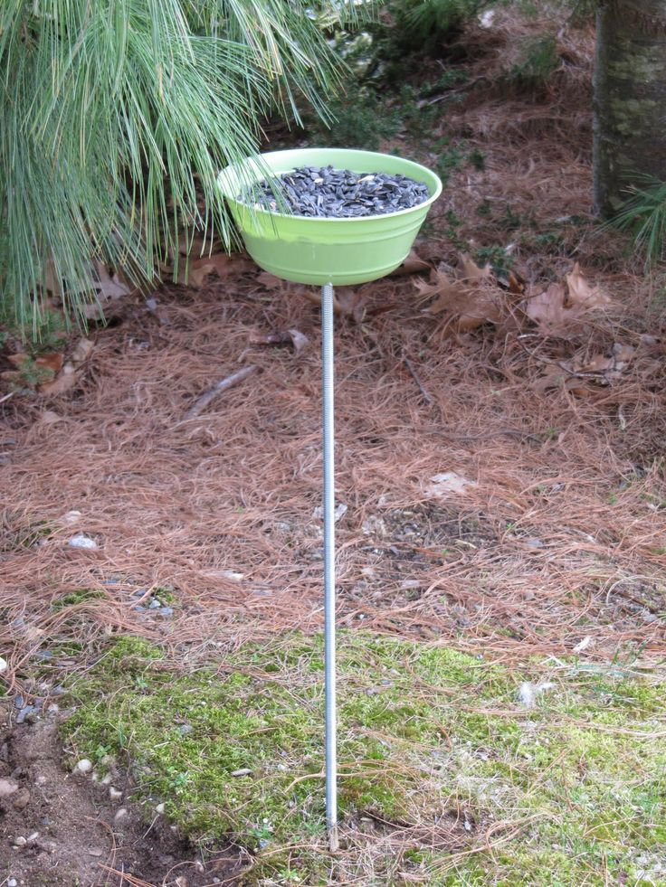 homemade bird feeders 16 best bird baths images on garden ideas 12902