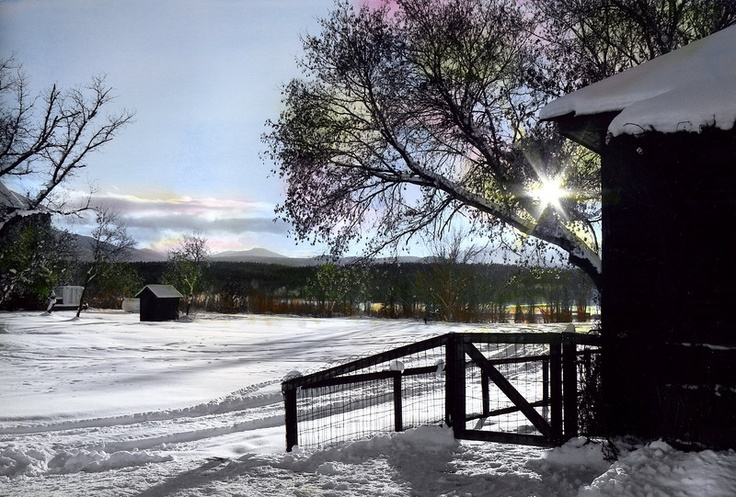 Handpainted Fort Steele winter - myeyesphoto's Photos