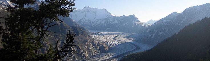 Randonnez à la découverte des paysages pittoresques du Valais en Suisse, en suivant les bisses vertigineux le long du glacier d'Aletsch jusqu'au Bietschhorn