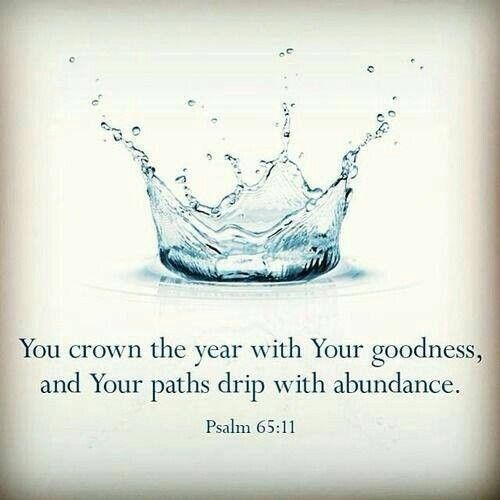 Psalm 65:11.  You crown the year with Your goodness and Your paths drip with abundance.