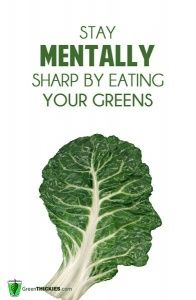 Want To Stay Mentally Sharp? Eat Your Greens!