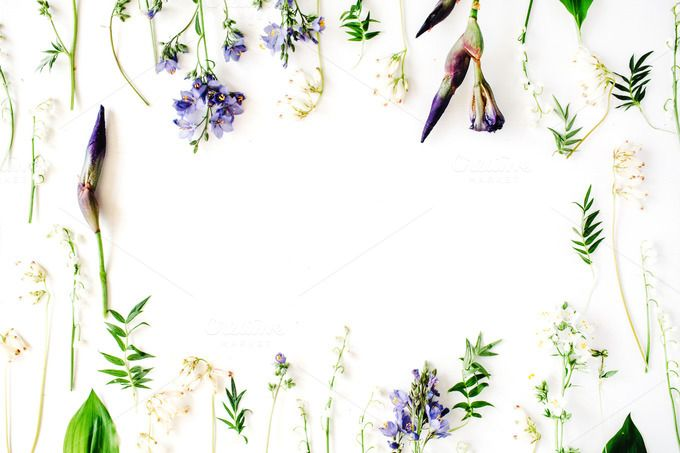#Floral frame with iris  Floral frame with purple iris flower lily of the valley branches leaves and petals isolated on white background. Flat lay composition for bloggers magazines web designers social media and artists. This purchase includes one high resolution horizontal digital image. Image is a sRBG jpg and is approximately 5644x3763 pixels. Some more floral frame compositions here: http://ift.tt/29WABSO License terms: http://ift.tt/1W9AIer
