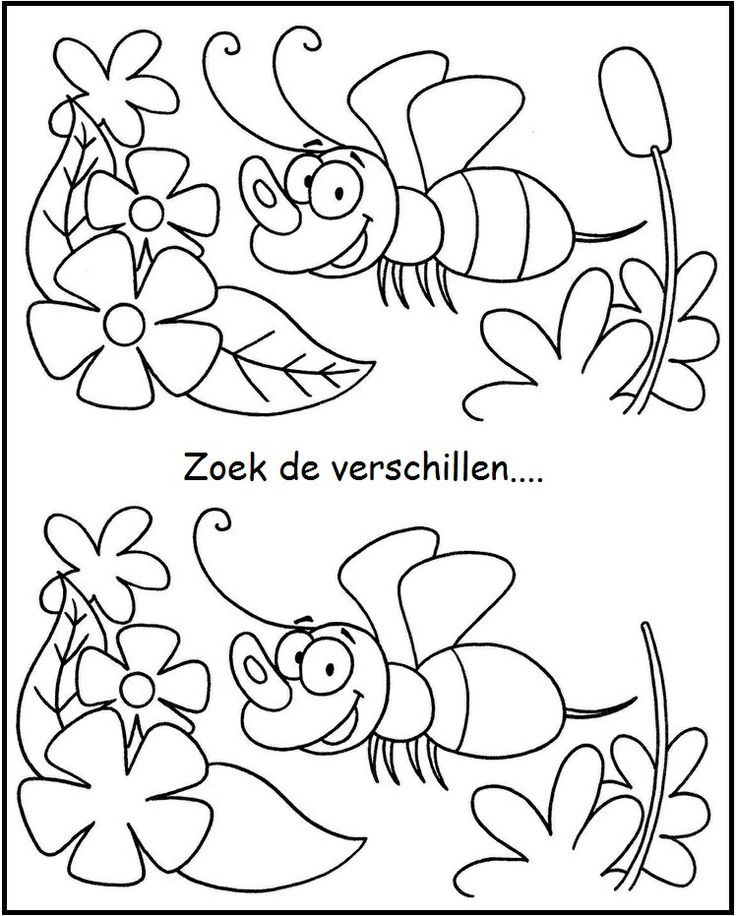 zoek de verschillen / find differences
